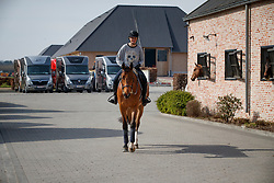 Andersson Petronella, SWE<br /> Stephex Stables - Meise 2017<br /> © Hippo Foto - Dirk Caremans<br /> 14/03/17