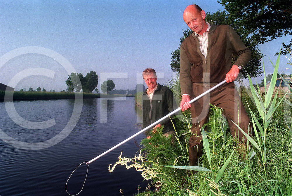hardenberg : op zoek naar zwemmende reeen..foto frank uijlenbroek©1996