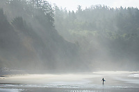 Scenic image of Ecola State Park, OR.