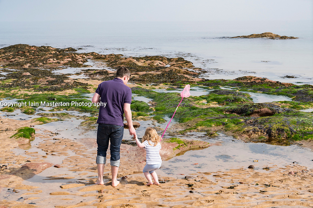 Father and young daughter exploring rock pools on beach at North Berwick on Forth Estuary in East Lothian, Scotland, United Kingdom.