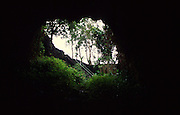 Kaumana caves, Island of Hawaii<br />