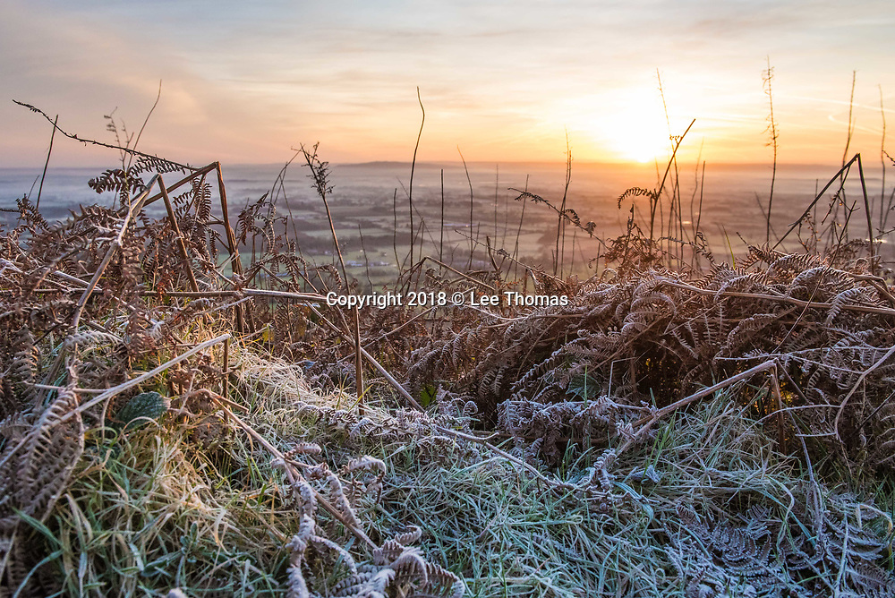 Malvern Hills, Worcestershire, UK. 30th January 2018.  A cold and frosty sunrise on the Malvern Hills. Pictured: Ferns coated with overnight frost as sunrise appears across the Severn plain. // Lee Thomas. Tel. 07784142973. Email: leepthomas@gmail.com www.leept.co.uk (0000635435)