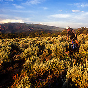 Brennen Fitzgerald rides in the pinyon pine of the Bone Yard Trail in Eagle, Colorado.