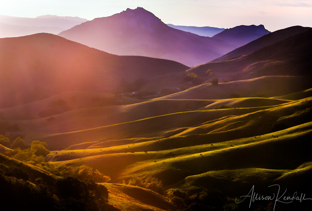 Sunset light falls across purple mountains and green pastoral hills in Central California fine art photography, art photography, fine art, prints, photo print, fine art prints, photography art prints,