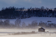 GOSHEN - Strongs winds blow snow across farm fields on Jan. 30, 2015.