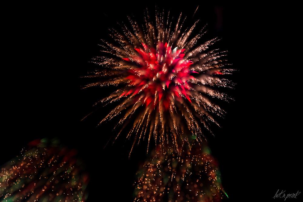 Fire In Bloom 2017 - Firework Photos