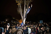 A man in a tree is lit by police flashlights as he protests President-Elect Donald Trump in front of the White House in Washington early on the morning of Nov. 9, 2016. After a long and bitter campaign, President-Elect Donald J. Trump, republican nominee, was elected to be the 45th president.