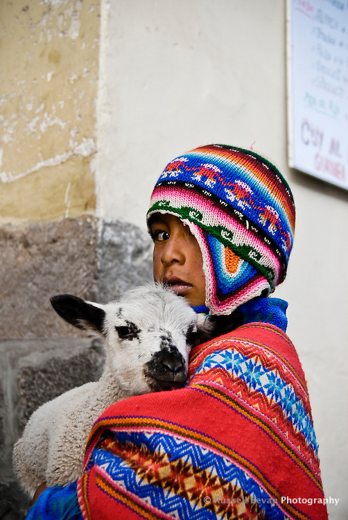 A quechua boy poses with his lamb in Cusco, Peru