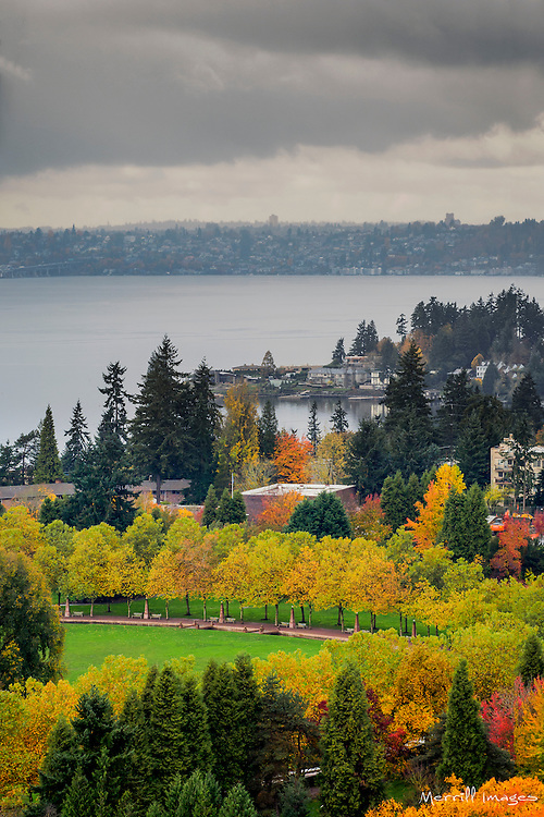 USA, Washington, Bellevue. View toward Meydenbauer Bay.