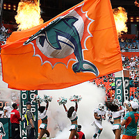 Miami Dolphins players enter the stadium prior to an NFL football game between the New York Jets and the Miami Dolphins on Sunday, September 23, 2012 at SunLife Stadium in Miami, Florida. (AP Photo/Alex Menendez)