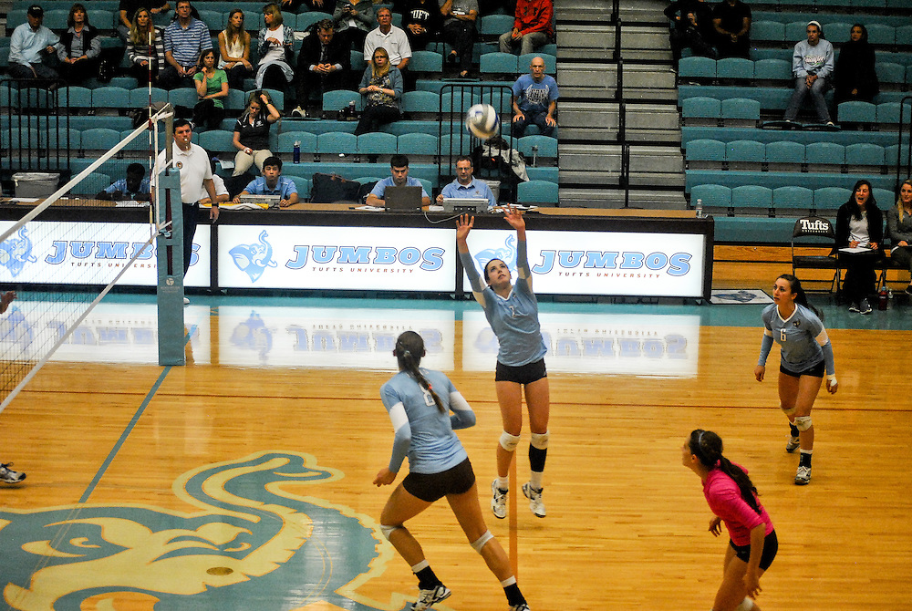 10/18/2013 - Cousens Gym, Tufts Medford campus - Tufts junior, and captain, Jessica Ingrum, opposite hitter,  hits the ball during the volleyball home game where Tufts defeats Hamilton 25-12. Caroline Geiling / The Tufts Daily