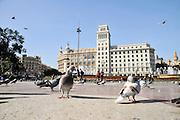 Catalunya Square (Placa Catalunya), Barcelona, Spain