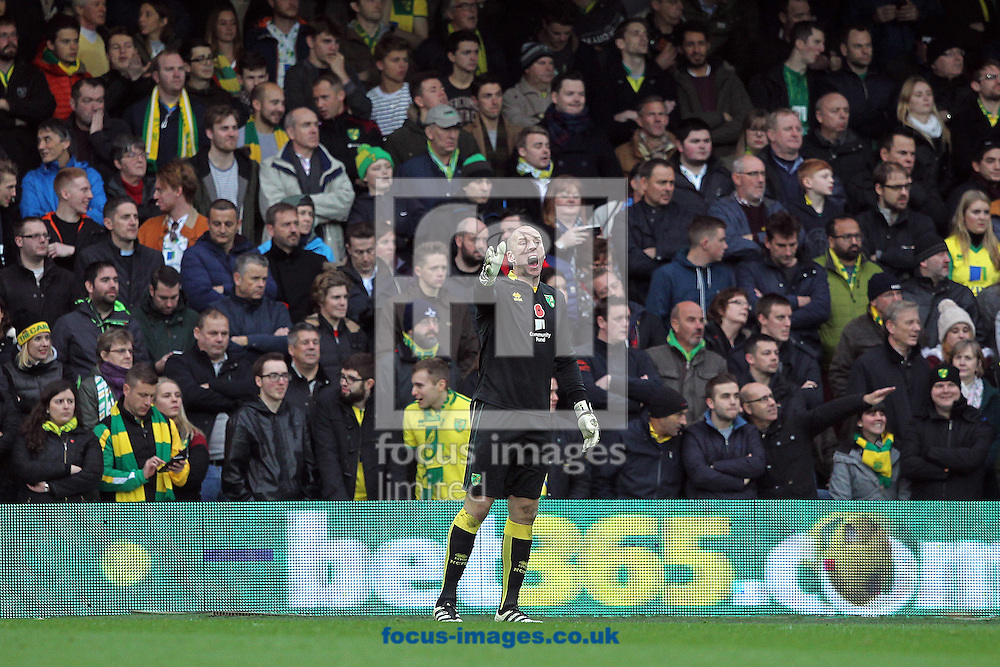 John Ruddy of Norwich during the Sky Bet Championship match at the Loftus Road Stadium, London<br /> Picture by Paul Chesterton/Focus Images Ltd +44 7904 640267<br /> 19/11/2016