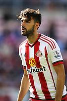 Jordi Gomez, Sunderland