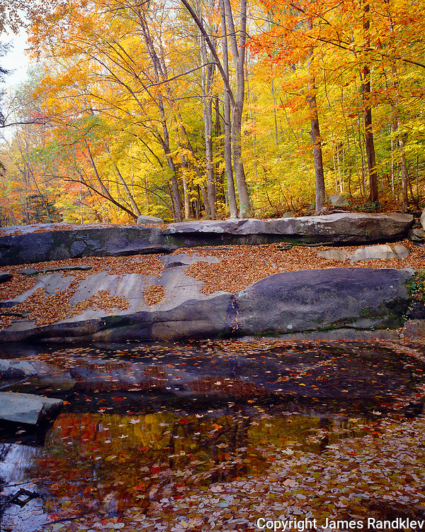 autumn colors along Stickney Brook, Windham County, VT