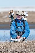Amanda Van Dellen, Waterfowl biologist, measuring and marking eggs at Black Brant colony; Branta bernicla nigricans, Tutakoke River research camp, Yukon Delta NWR, Alaska