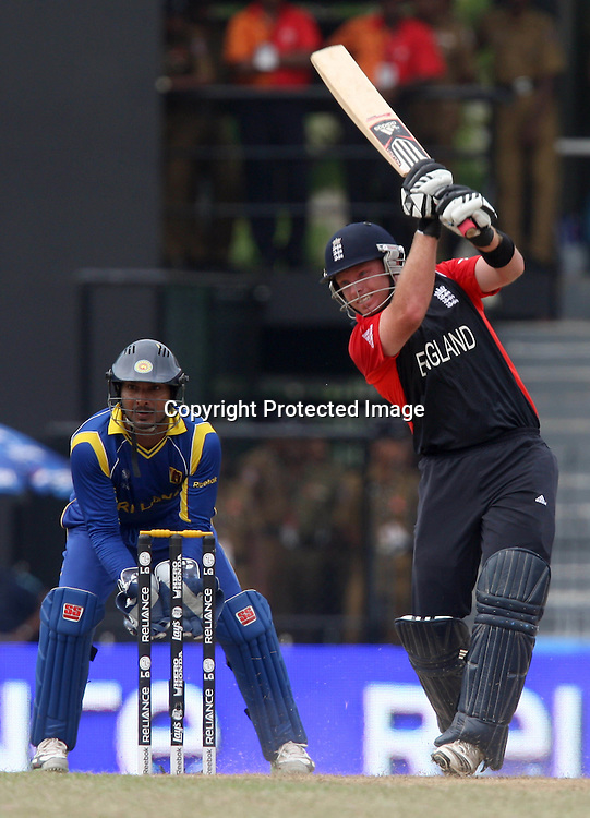 England batsman Ian Bell plays a shot against Sri Lanka during the ICC Cricket World Cup - 4th Quarter-Final Played at R Premadasa Stadium, Colombo