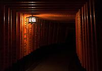 Tunnel of Tori Gates at night at Fushimi Inari Taisha in Kyoto, Japan.