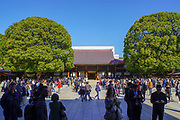 Meiji Jingu. Meiji Shrine located in Shibuya, Tokyo, is the Shinto shrine that is dedicated to the deified spirits of Emperor Meiji and his wife, Empress Shōken