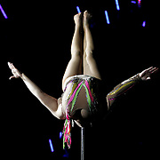 White Plains, NY / 2008 - Mongolian contortionist Ms. Ognatoya balances her body weight on her chin while demonstrating unique flexibility during an acrobatic performance at the Royal Hanneford Circus at the Westchester County Center. (Mike Roy / The Journal News)