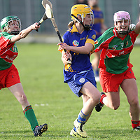 13/10/13 An under pressure Newmarket's Aine O Brien clears the balll during the Senior Camogie Final in Clarecastle. Pic Tony Grehan / Press 22