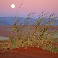 Africa, Namibia, Sossusvlei. The full moon rises over the NamibRand Nature Reserve  in Sossusvlei, Namibia.