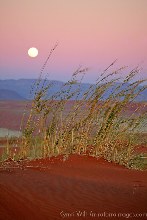 Africa, Namibia, Sossusvlei. The full moon rises over the NamibRand Nature Reserve  in Sossusvlei, Namibia.