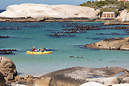 https://Duncan.co/kayaking-with-penguins