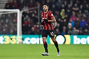 Callum Wilson (13) of AFC Bournemouth during the Premier League match between Bournemouth and Brighton and Hove Albion at the Vitality Stadium, Bournemouth, England on 21 January 2020.