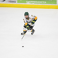 1st year forward Jordan Kulbida (18) of the Regina Cougars in action during the Women's Hockey home game on November 18 at Co-operators arena. Credit: Arthur Ward/Arthur Images