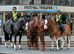 Joey, the life-sized puppet horse from the hit production of War Horse, arrived outside the Festival Theatre in Edinburgh with actor Thomas Dennis, who plays Albert, where he met up with police horses Lewis and Kilmarnock, ridden by PC Kaeren Muir (left) and PC Claire Hunter (right)<br /> <br /> &copy; Dave Johnston/ EEm