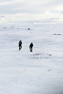 Two naturephotographers walking the white expanses of Jotunheimen in Norway.