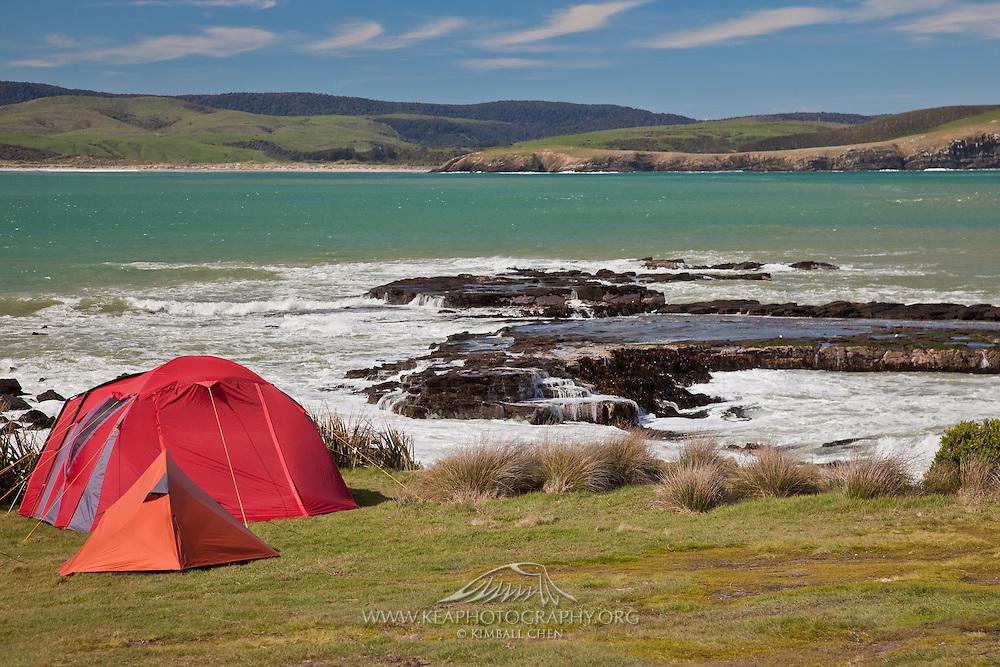 Camping at Curio Bay, South Island, New Zealand