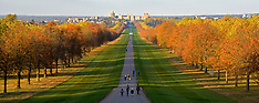 OCT 27 2014 Long Walk - Windsor Great Park
