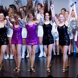 20090110: Dance - Zmajcice, The Dragon ladies night dance