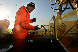 NORWAY LOFOTEN HENNINGSVAER 28MAR07 - Aboard the Utheim Jr, a cod fishing boat off Henningsvaer on the Lofoten islands...jre/Photo by Jiri Rezac..© Jiri Rezac 2007..Contact: +44 (0) 7050 110 417.Mobile: +44 (0) 7801 337 683.Office: +44 (0) 20 8968 9635..Email: jiri@jirirezac.com.Web: www.jirirezac.com..© All images Jiri Rezac 2007 - All rights reserved.