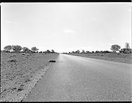Road, near Wilcannia