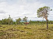 Det var i sin tid 12 nybyggergårder i Nekåbørja (Nekåbjørgen). Nå er det cirka 10 igjen, ca 8 med fast beboelse.