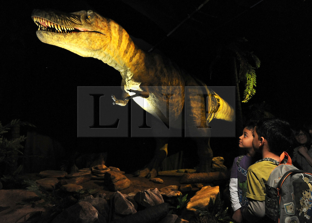 © licensed to London News Pictures. LONDON UK. 20/04/11. A detail of the 3 metre animatronic Tarbosaurus. Dinosaurs make a return to the London's Natural History Museum in this summer's family blockbuster exhibition, Age of the Dinosaur. .See special instructions for usage rates. Photo credit should read Stephen Simpson/LNP