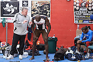 WIDNES, ENGLAND, SEPTEMBER 30, 2008: Fighters take part in a training session at Wolfslair MMA Academy in Widnes, England on September 30, 2008 © Martin McNeil