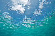 Sky view from beneath the ocean surface looking upward at blue sky and white clouds.