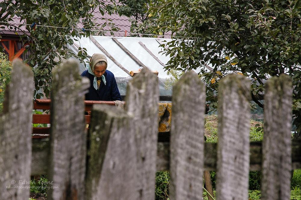 A woman works in her garden in Białowieża, Poland.