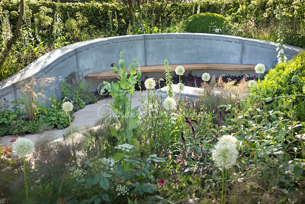 Concrete wall inscribed with scent memories, wooden bench seat, woodland borders with white Allium, Foeniculum vulgare (fennel), box mounds, foxgloves, Angelica, roses and Opium poppies<br /> <br /> The Jo Whiley Scent Garden <br /> <br /> Designed by<br /> Tamara Bridge &amp; Kate Savill<br /> <br /> Built by<br /> Bespoke Outdoor Spaces