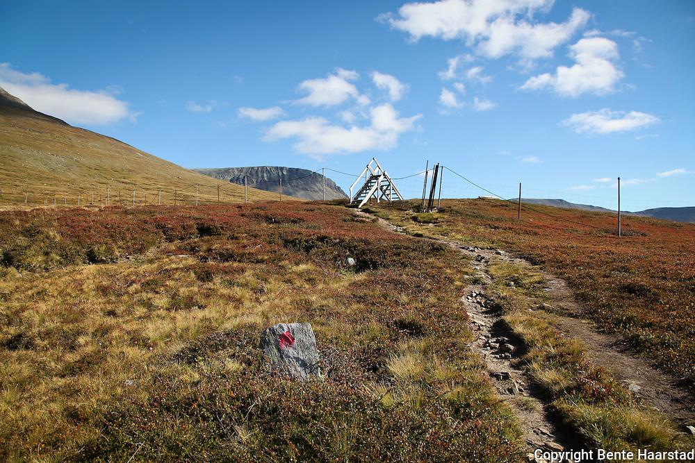 Reingjerde på riksgrensa mot Sverige, ved Storsola i Sylan. Border between Norway and Sweden.
