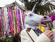 Mardi Gras in New Orleans 2013