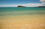 Island in Tasman Bay, Abel Tasman National Park, South Island, New Zealand