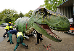 © Licensed to London News Pictures. 14/05/2012. Bristol, UK. Animatronic Dinsosaurs from Texas arrive at Bristol Zoo, ready for showing to the public on 24 May.  14 May 2012..Photo credit : Simon Chapman/LNP