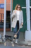 Dakota Johnson walks her dog in New York