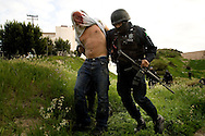 Federal police officers take a suspect into custody in connection with a shooting in Tijuana, Mexico, Monday, March 9, 2009. Mexico's cartels are losing their grip on the prized U.S. drug market, largely because of a cross-border crackdown and a regional shift in worldwide cocaine consumption.