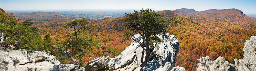 From atop Hanging Rock, you can view across a sea of autumn orange and red foliage to Moore's Wall, at Hanging Rock State Park in Stokes County, North Carolina, USA. (Panorama stitched from 4 images.) The eroded quartzite knob called Hanging Rock rises to 2150 feet elevation. The park is 30 miles (48 km) north of Winston-Salem, and approximately 2 miles (3.2 km) from Danbury. Hanging Rock State Park is located in the Sauratown Mountain Range, which is made up of monadnocks (or inselbergs, isolated hills) that are separated from the nearby Blue Ridge Mountains. Prominent peaks in the Sauratown range rise from 1,700 feet (520 m) to more than 2,500 feet (760 m) in elevation and stand in contrast to the surrounding countryside, which averages only 800 feet (240 m) in elevation. Named for the Saura Native Americans who were early inhabitants of the region, the Sauratown Mountains are the erosion-resistant quartzite remnants of mountains pushed up between 250 and 500 million years ago. Panorama stitched from 4 overlapping photos.